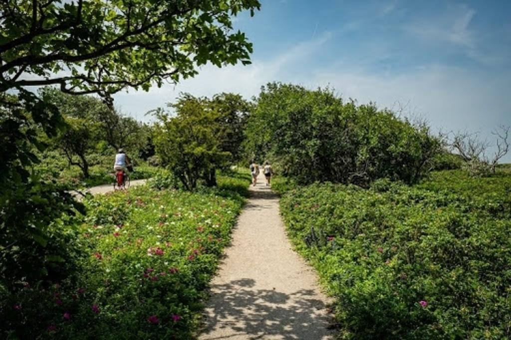 Beschermde natuurgebieden bieden de bezoeker mooie wandel- en fietsroutes en letterlijk een 'zee van ruimte'. Foto: pr  © Telstar Uitgeverij B.V