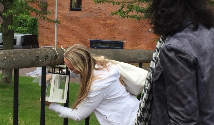 De mooie en in Ypenburg bekende zwaan Anthon en zijn gezin zijn niet meer. Jolanda Klok hangt ter nagedachtenis een lantaarn bij de brug in het bijzijn van stadsdeeldirecteur Petra Sevinga. Foto: Michelle Milton-Spaans