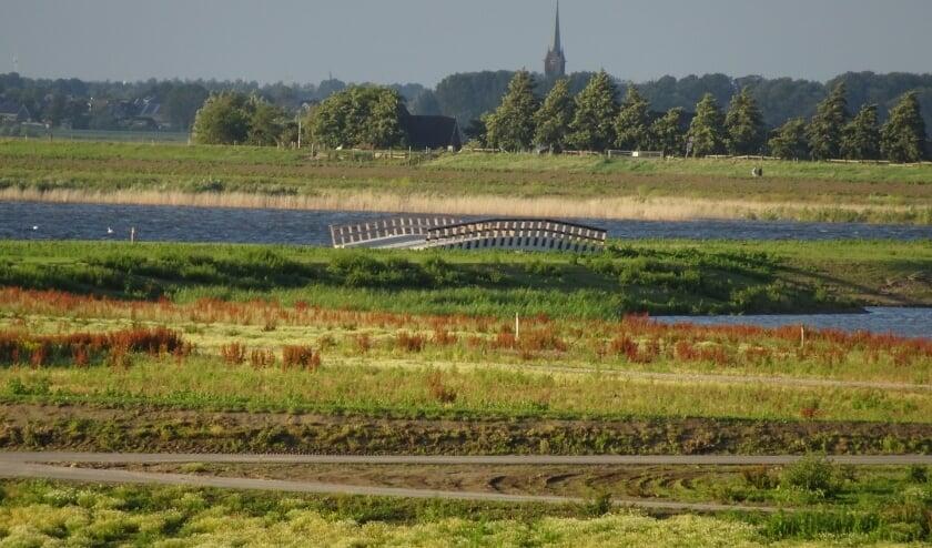 Het middengebied van de Nieuwe Driemanspolder is reeds opengesteld voor bezoekers. Zo'n groot natuurgebied om de hoek is ook voor de bewoners van Leidschenveen-Ypenburg een aanwinst  Foto: Ronald Koster