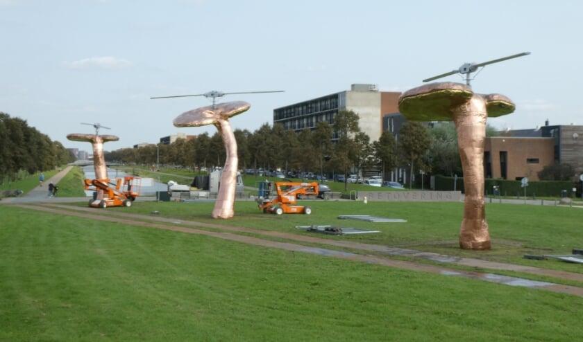 Een intrigerend en reusachtig ensemble van drie 'paddenstoel-helikopters'. Foto: Dick Muijs