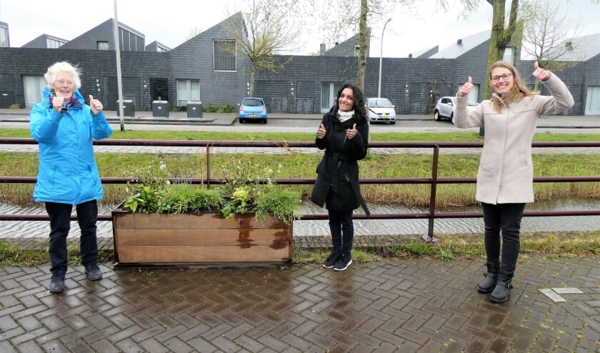 <p>Ida (l.) en haar buurtbewoners zorgen voor een fraaie, groene woonomgeving. Tekst en foto: Dick Muijs</p>