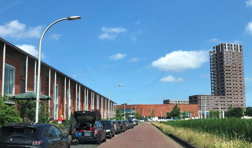 <p>Parkeerplekken aan een deel van de Blauwe Reigersingel. Hoe druk wordt het daar in de toekomst? Foto: Peter Zoetmulder</p>