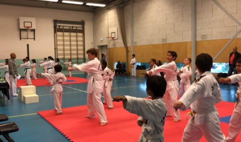 <p>Het gaat weer de goede kant op met de sportactiviteiten: de Taekwondo kampioenschappen Stijl. Foto: pr</p>
