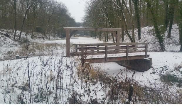 Zondag 24 maart zet IVN Geijsteren-Venray een wandeling op touw in het natuurgebied Fossa Eugeniana.