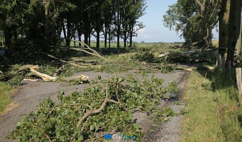 Afgewaaide takken versperren de weg in de omgeving van Oude-Tonge. Foto: Wilko van Dam