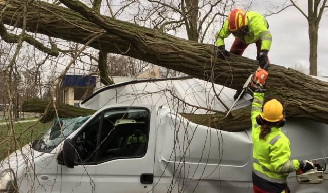 Op de Kornetstraat in Uden werd een auto door een boom getroffen    Fotonummer: e74378