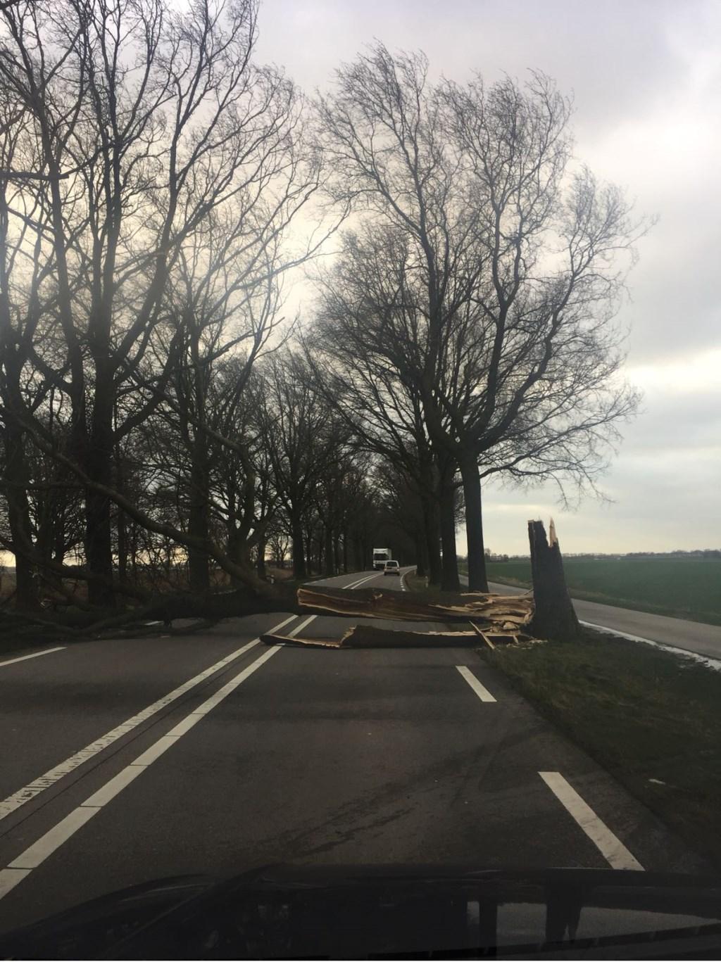 Middenpeelweg Foto: DeMooiUdenKrant © MooiUden