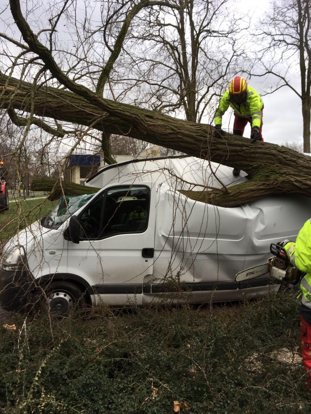 Op de Kornetstraat in Uden werd een auto door een boom getroffen Foto: Gerard van de Pas © MooiUden
