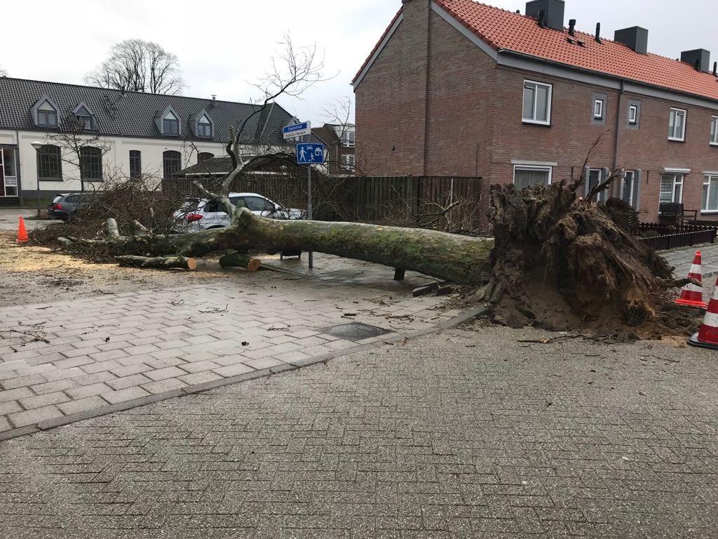 Bogerdstraat Uden Foto: DeMooiUdenKrant © MooiUden