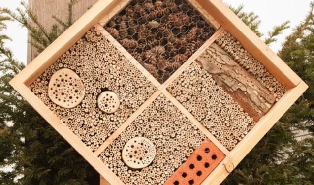 De bijenhotel wordt bij de begraafplaats Eikenhof geplaatst.