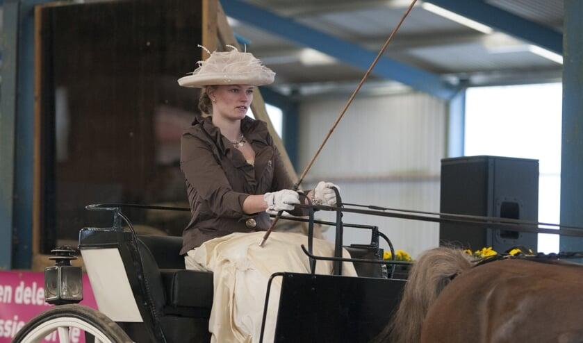 Tijdens het paardenfestijn in Benningbroek is van alle te zien en beleven. Kom ook en geniet van het spektakel.