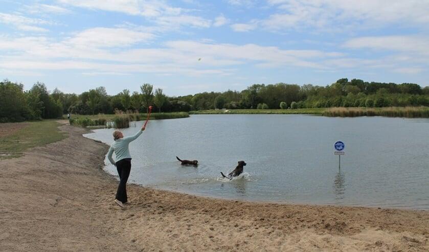 De hondenzwemplek is aangelegd op het deel waar honden toch al los mogen lopen.