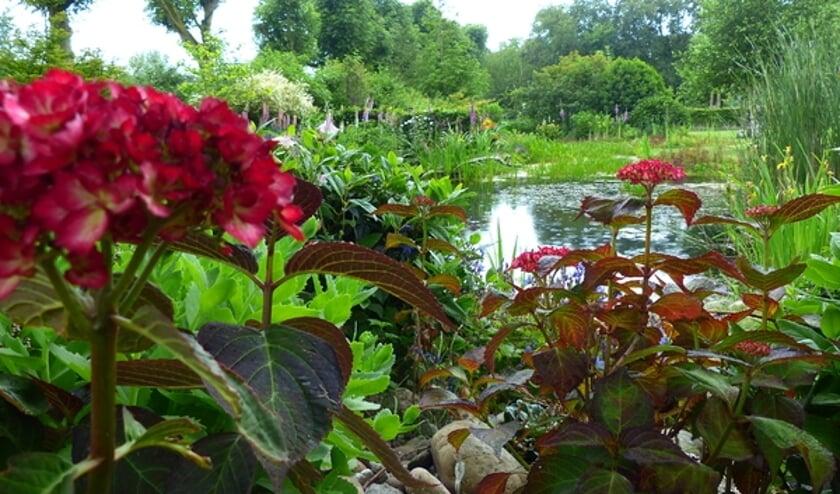 Gepassioneerde tuineigenaren willen iedereen laten meegenieten van hun prachtige privé-tuinen.