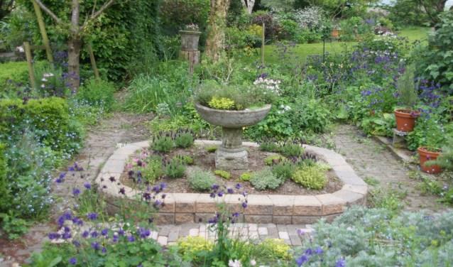 De tuin van de familie Neefjes in Wervershoof.