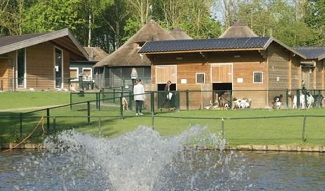 Een overzichtsfoto van de Vennepse kinderboerderij.