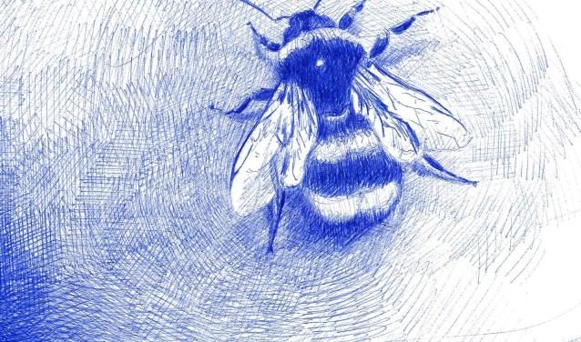Insecten, planten en bloemen in de tuin staan model voor de tekeningen.
