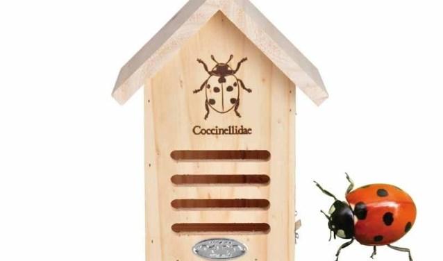 Bij het Koetshuijs staat lieveheersbeestjes centraal.