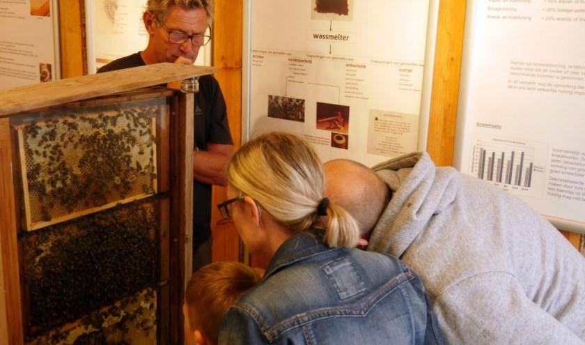 In het buitencentrum laten imkers zien hoe de bijenvolken in een demonstratiekast en een korf leven.