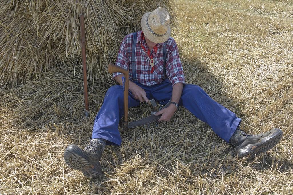 Een 'boer' maait koren, zoals dit 50 jaar geleden ging.  (Foto: Kees van der Veer Hoofddorp) © rodi