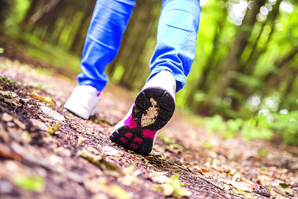 Wandel mee met de wandeltocht van Sportief Wandelen Stede Broec. (Foto: Shutterstock)