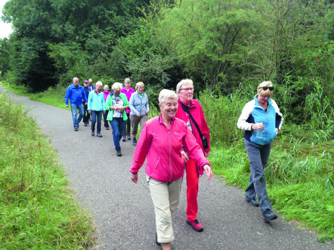 Wandelen in de regio? Kijk eens op www.recreatieschapwestfriesland.nl/recreeren/wandelen voor leuke wandelroutes. (Foto: archief Rodi Media)