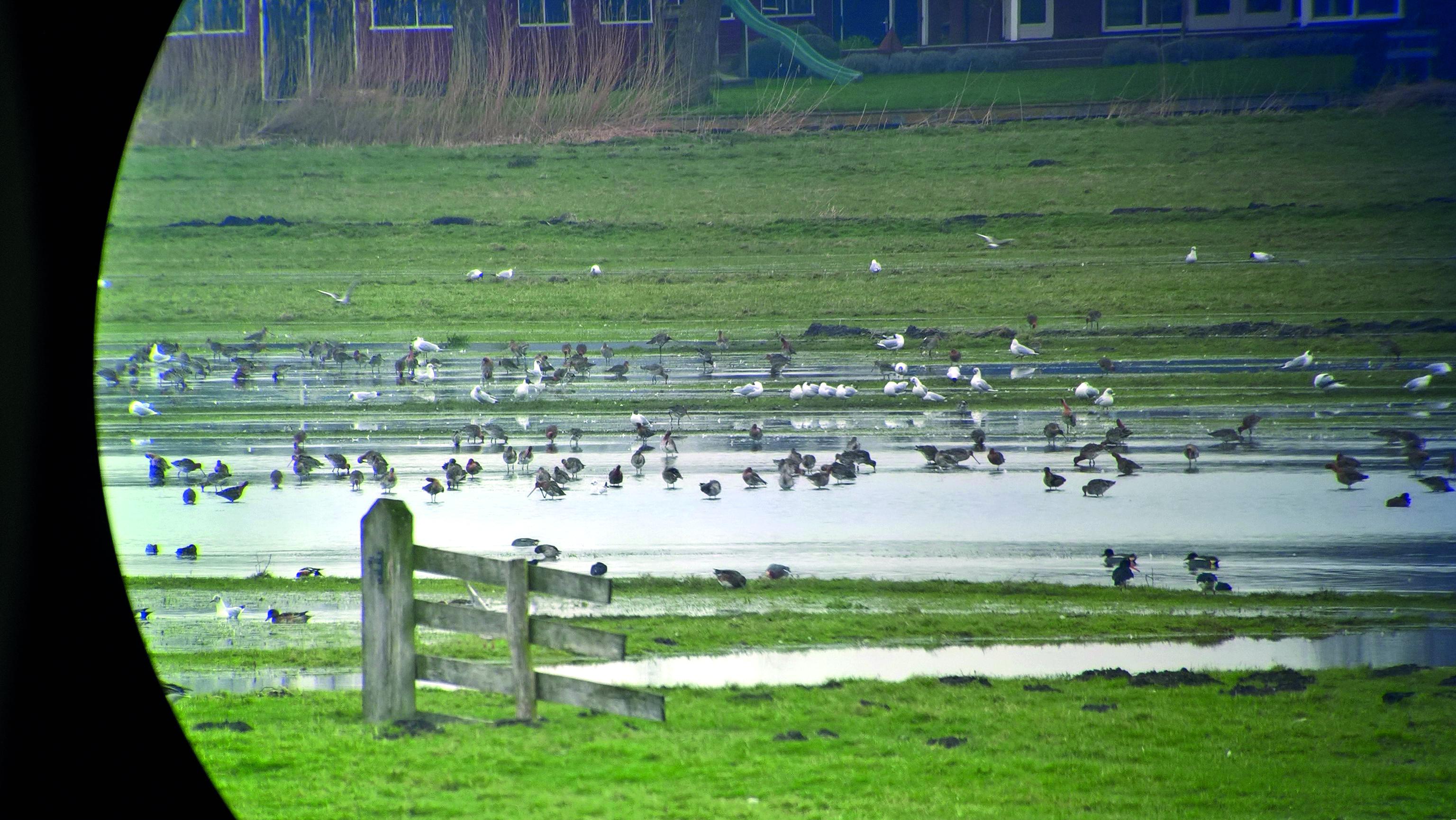 (foto: Inundatie van voor de restauratie, Studio Botman)