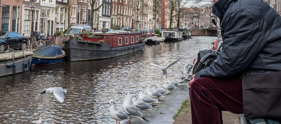 Ontdek ook waar de dieren wonen en zie hoe dichtbij de natuur is in de stad. (Foto: gemeente Amsterdam)