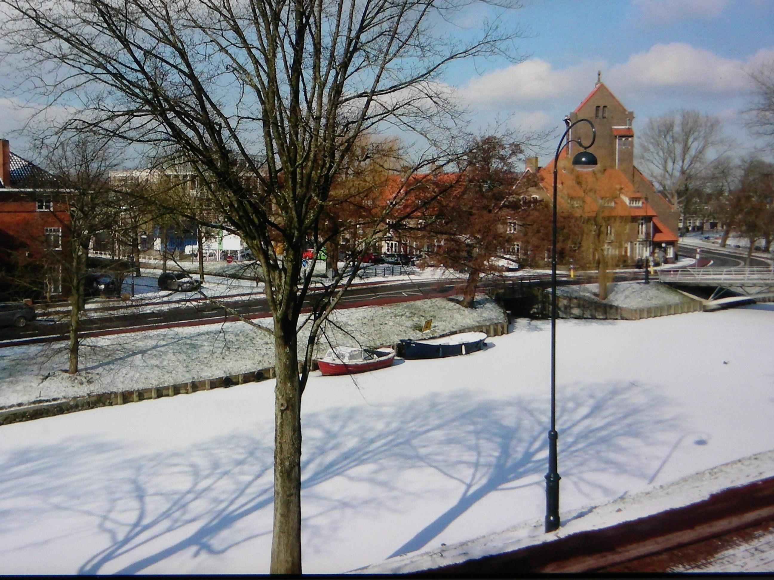 Haarlemmers gingen massaal het ijs op, met én zonder schaatsen. (Foto: Ad Timmers)
