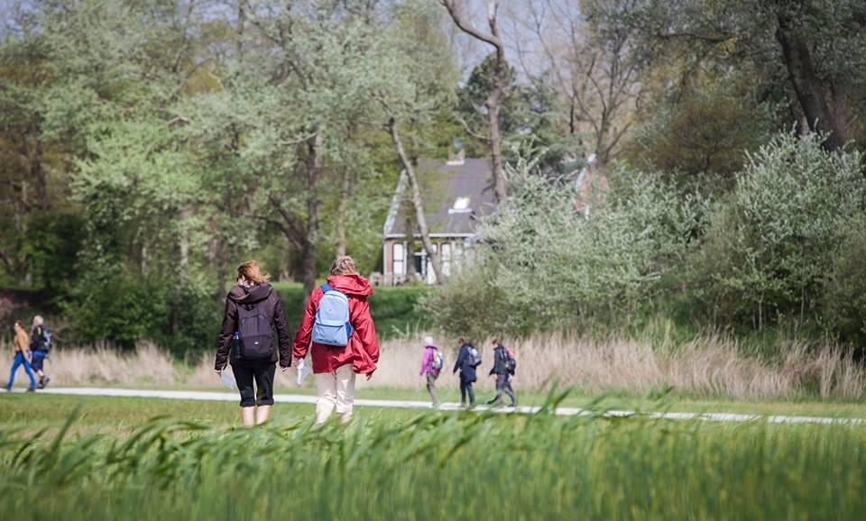 (Foto: Wandel4daagse Haarlem)