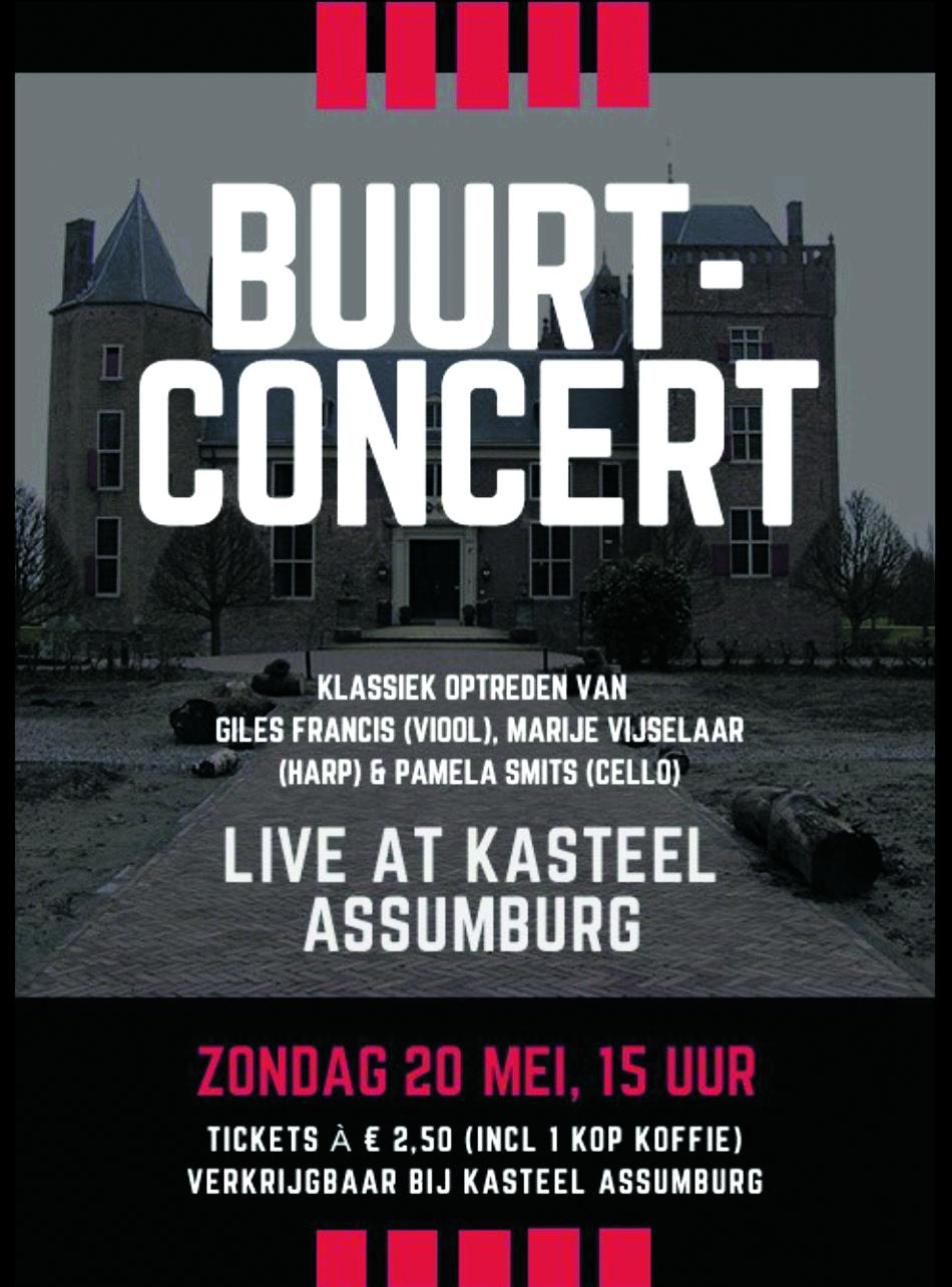Poster van het buurtconcert dat op 20 mei plaatsvindt in Assumburg. (foto aangeleverd)