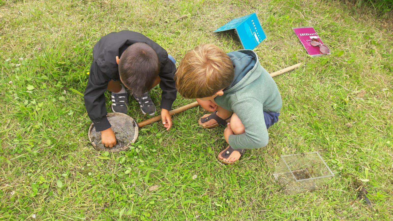 Slootbeestjes zoeken bij De Helderse Vallei. (Foto: aangeleverd)