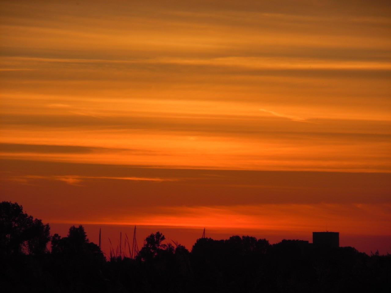 Tegen het vallen van de avond komen de nachtdieren in het Wormer- en Jisperveld tevoorschijn. (Foto: archief Poelboerderij)