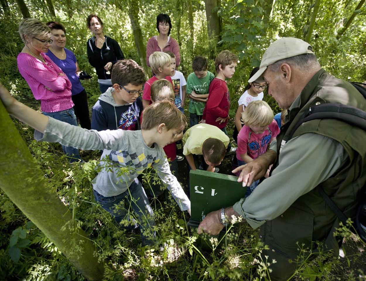 Ga mee op vleermuizenexcursie vanuit Eendenkooi 't Zand. (Foto: Dutchphoto)