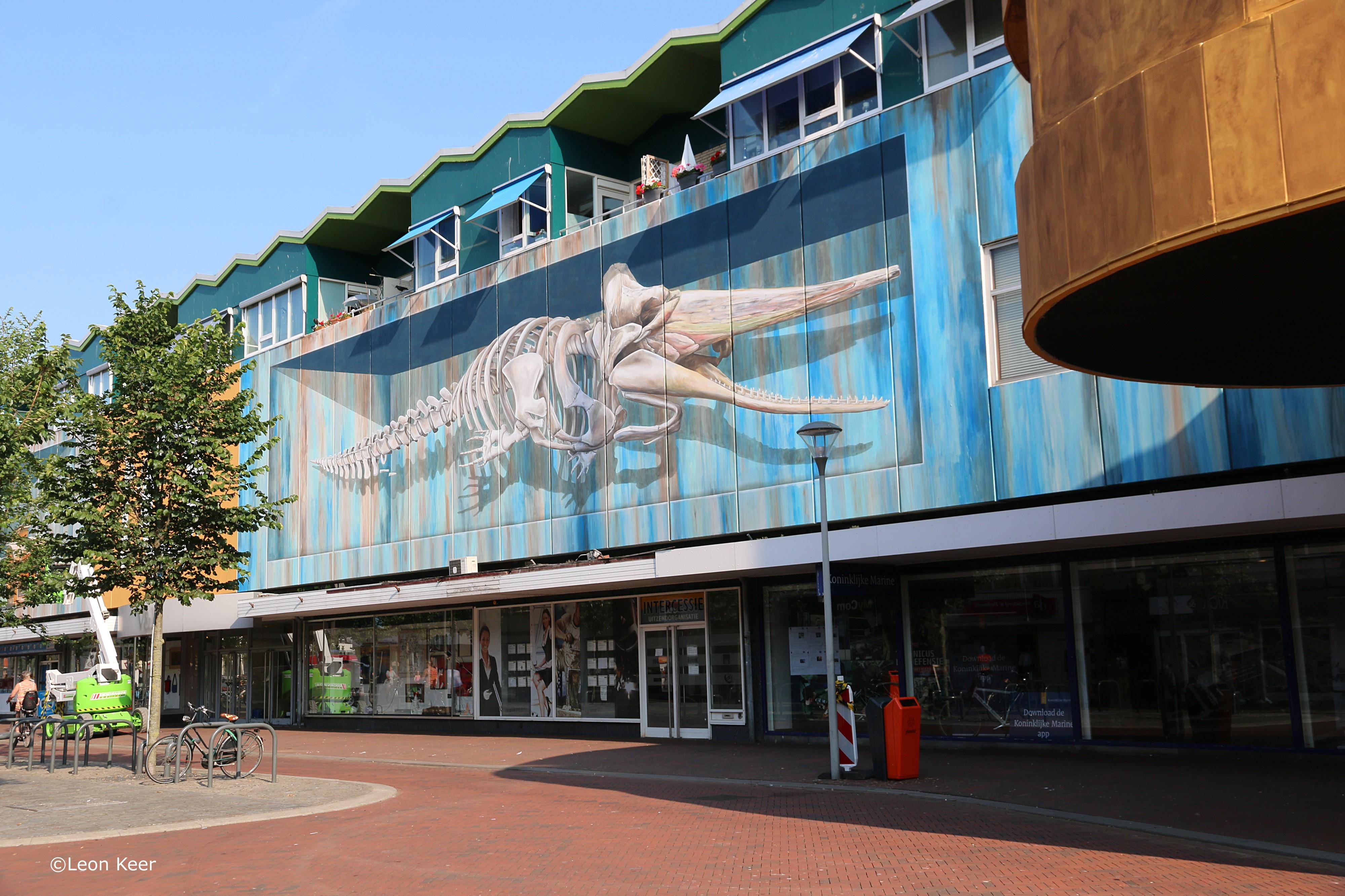 Met Chris de Potvis heeft Den Helder de grootste 3D mural van Nederland. (Foto: Leon Keer)