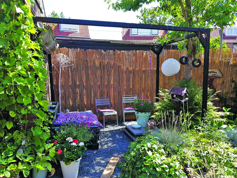Ylona's achtertuin. (Foto: Ylona Kool)