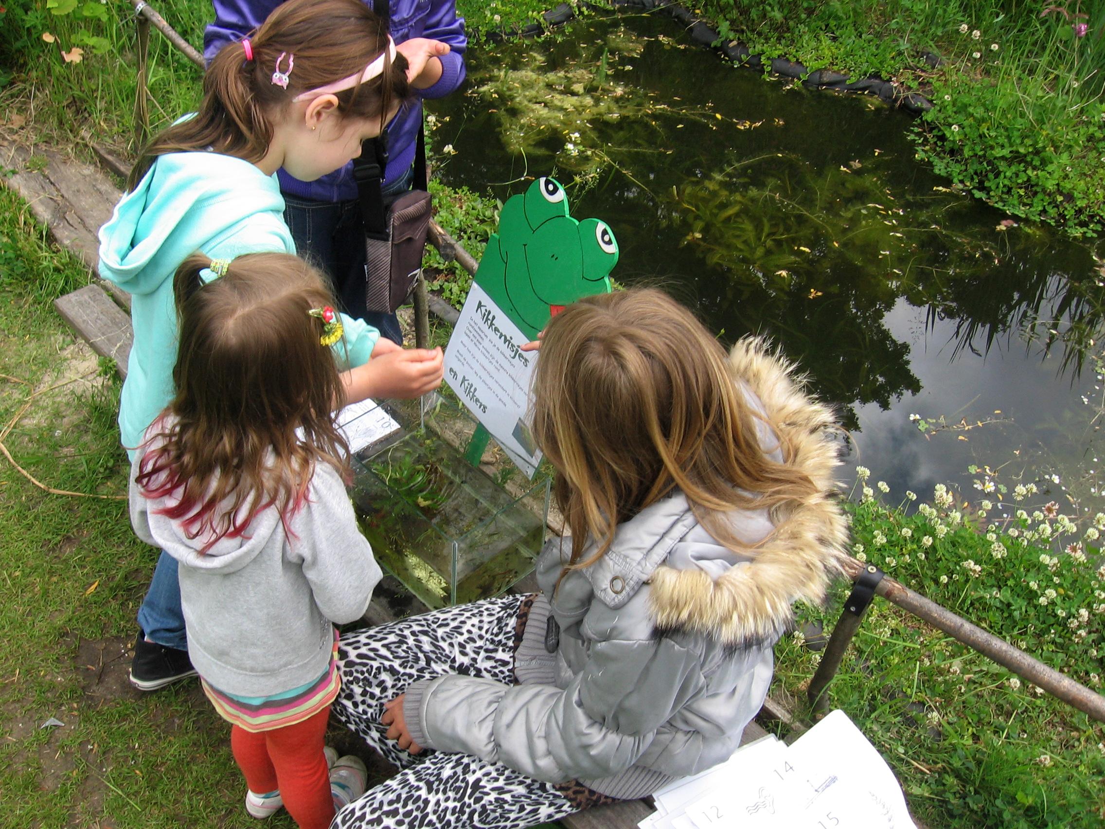 Kinderen tijdens een kikkerpad in de Heemtuin. (Foto: Zaansnatuurmilieucentrum)