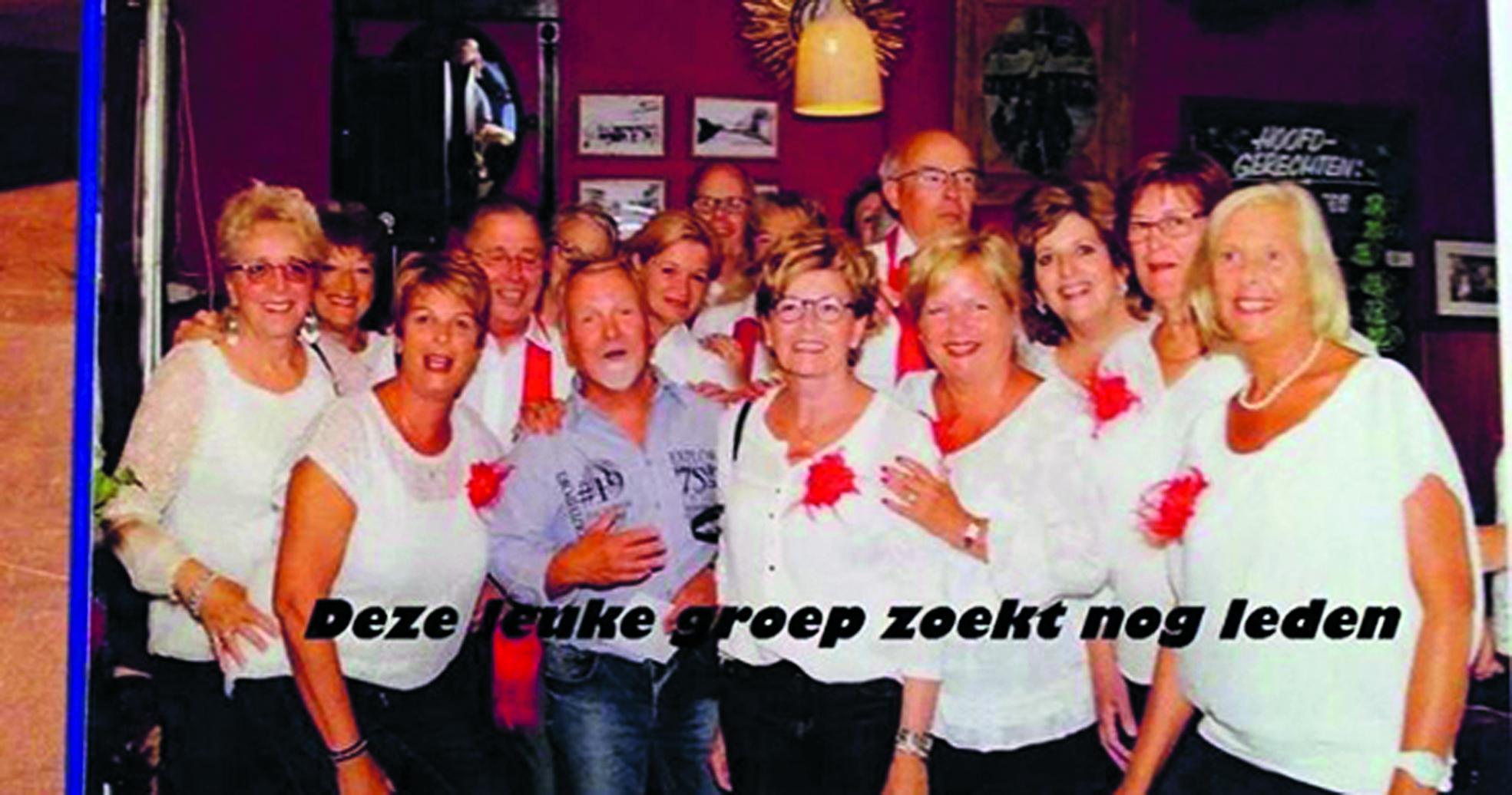 Het koor Puur#Hollands is op zoek naar nieuwe leden. (foto aangeleverd)