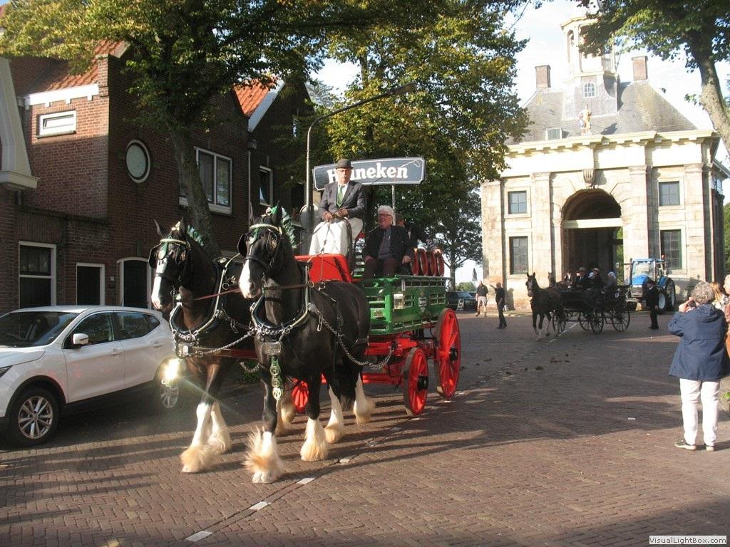 Tijdens de Harddraverijdag in Enkhuizen razen de paarden over de Paktuinen. (Foto: Maartje Brakenhoff) rodi.nl © rodi