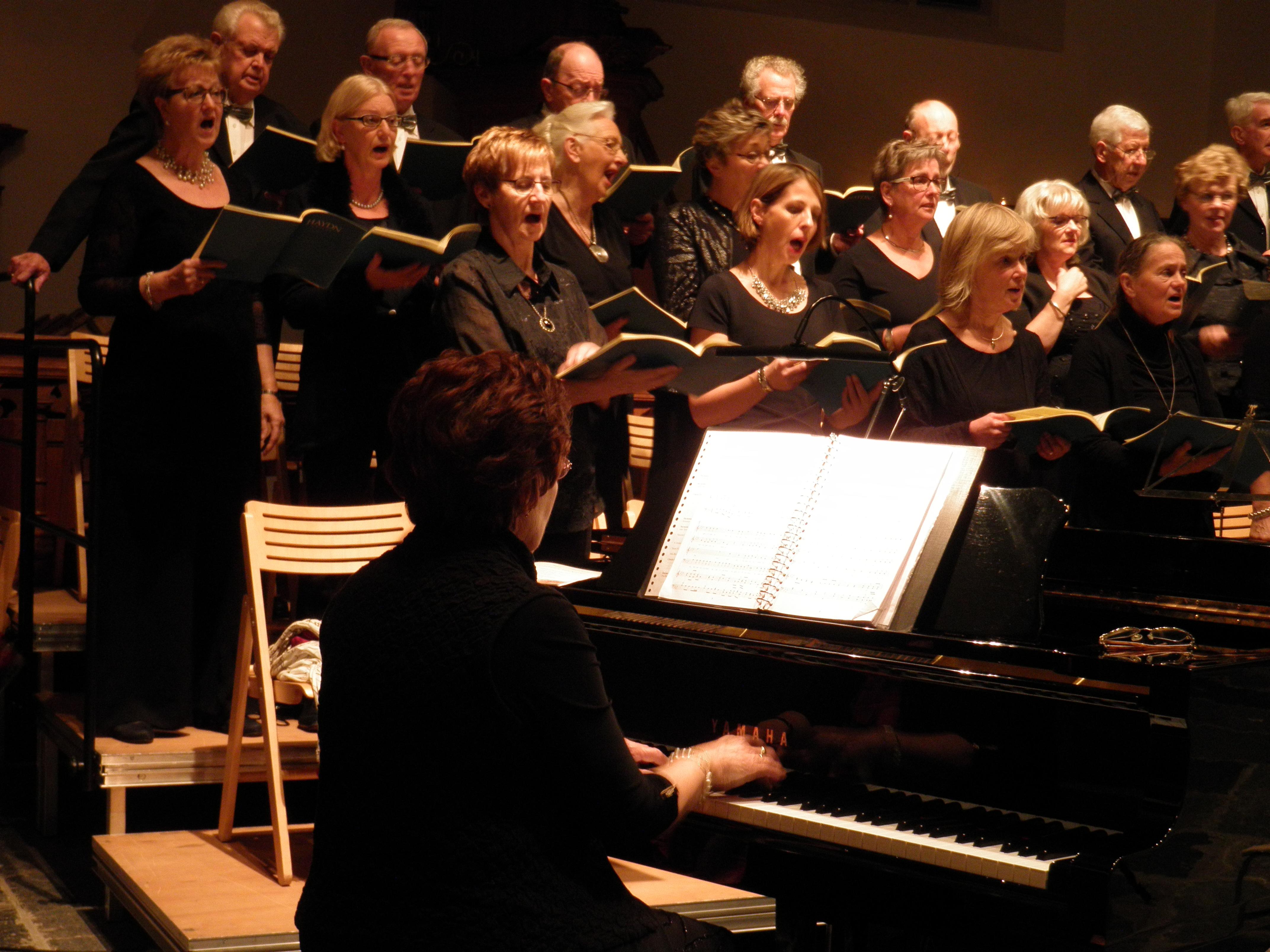 De Harmonie zingt. (Foto: Zangvereniging Harmonie)
