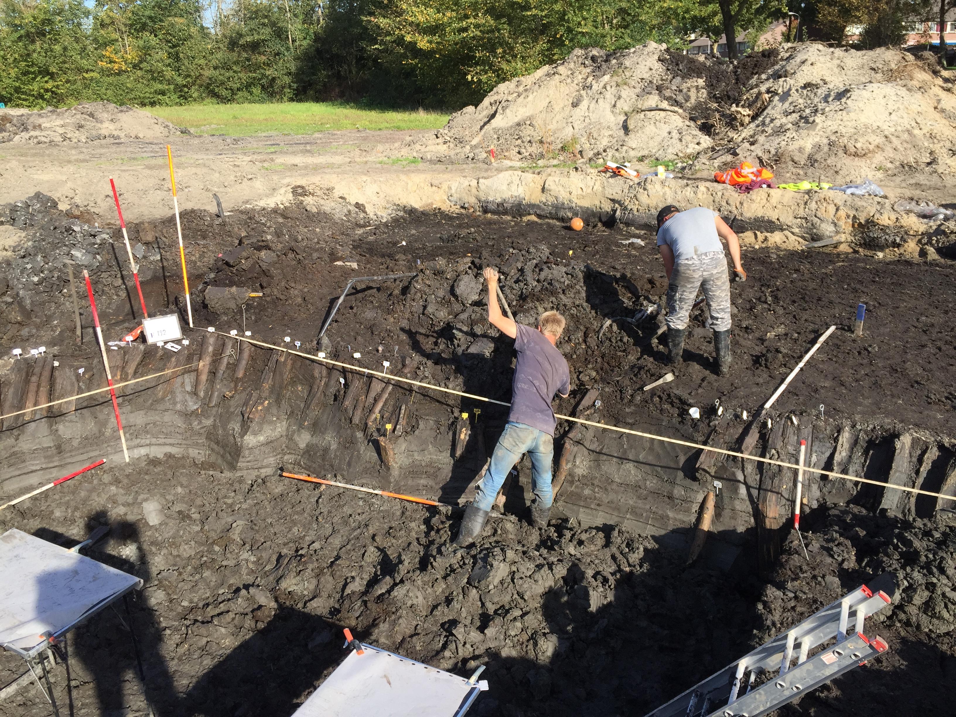 Archeologen leggen de noordhoek van de palissade bloot. Duidelijk zijn de in de grond bewaard gebleven onderkanten van de palen te zien. (Foto: gemeente Zaanstad)
