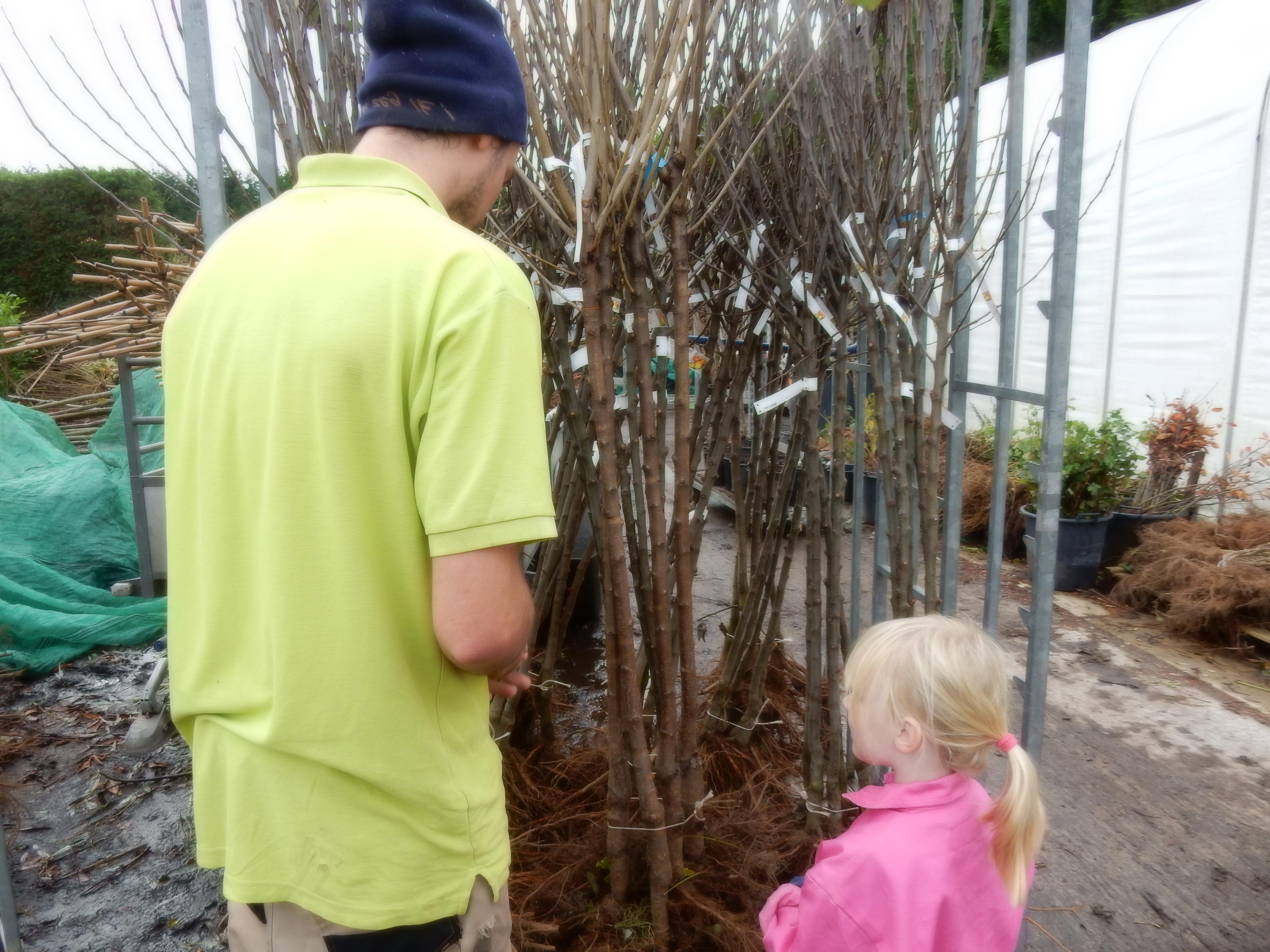 Willemijn en Thijs zoeken wat mooie fruitbomen uit. Nu kunnen fruitbomen met blote wortel worden geplant en is de keuze weer groot. (Foto: aangeleverd)