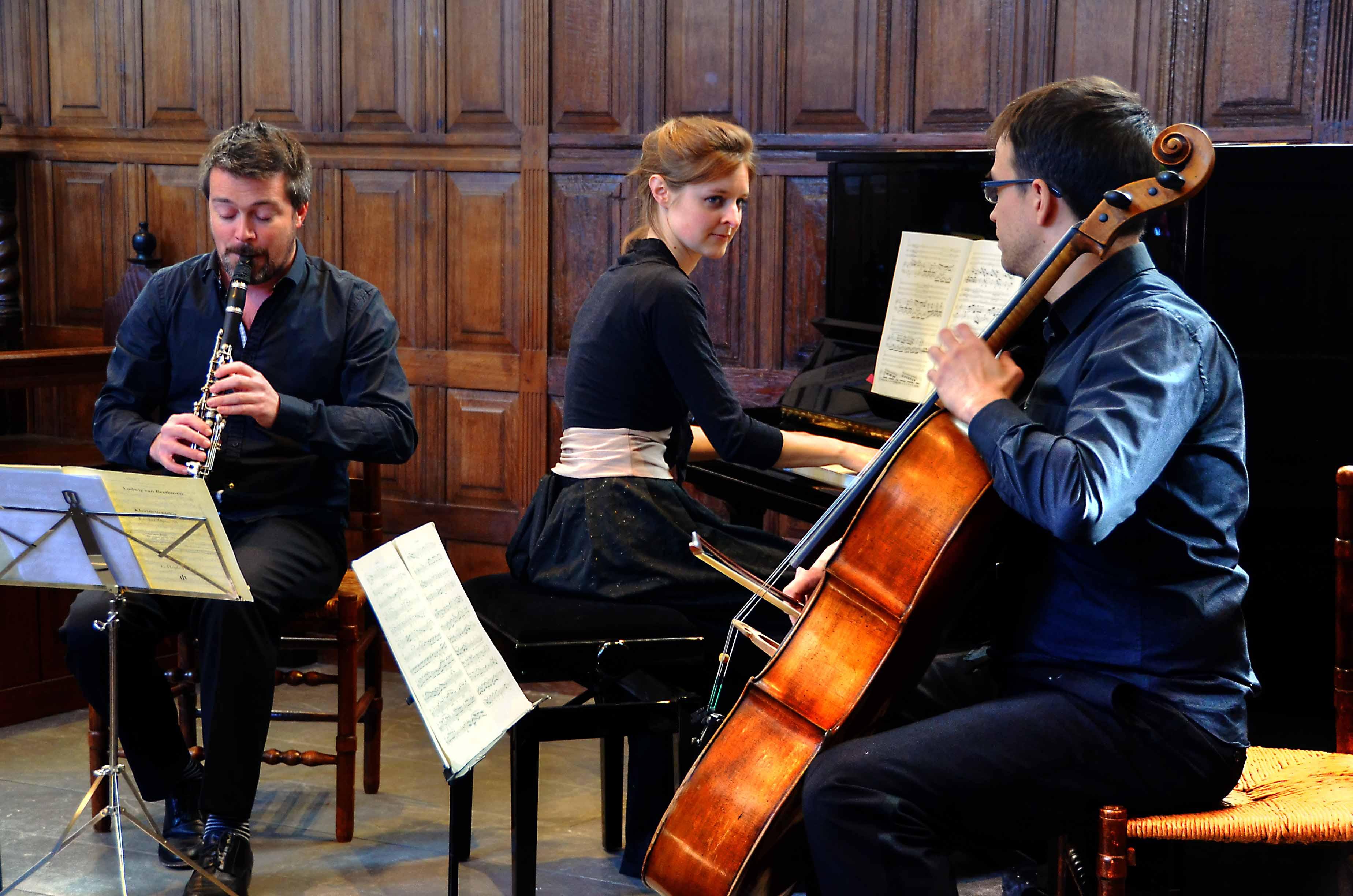 Het Arcadië trio treedt zondag 11 november op in het Groene kerkje in Lambertschaag. (Foto: Hieke Bijlsma)