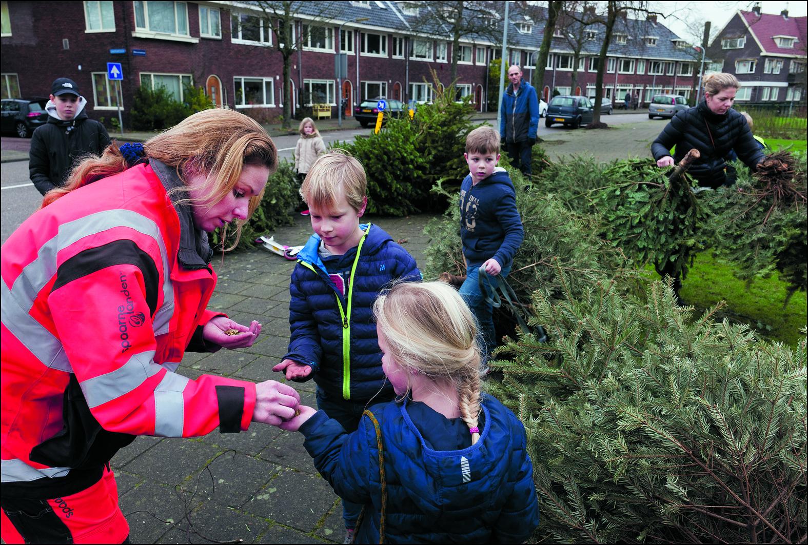 Het is voor kinderen altijd weer leuk om te zien wie er de meeste bomen heeft ingeleverd. (Foto: Paul Vreeker)