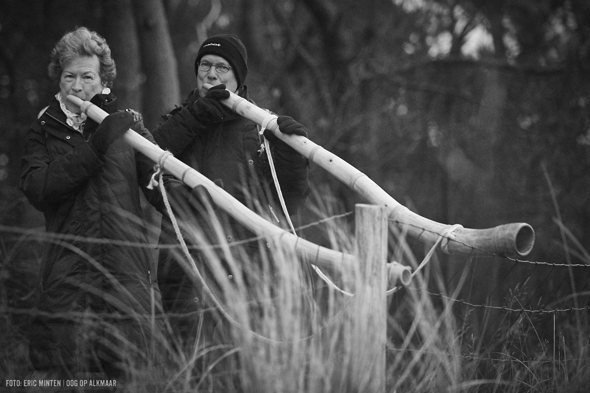 In bosbrasserie IJgenweis wordt een demonstratie midwinterhoornbouwen gegeven. (Foto: aangeleverd)