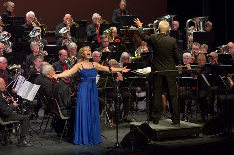 Het Noord-Hollands Ouderen Orkest. (Foto: aangeleverd)
