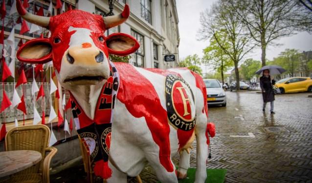 De Feyenoordkoe, welke al ruim een half jaar straalt voor het pand van café Dixi aan het Maarland