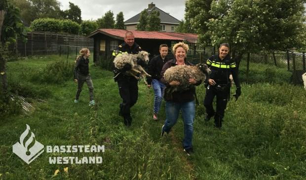 Foto: politie Westland