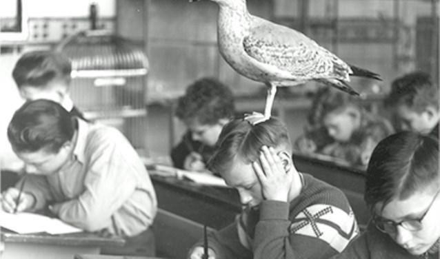 De bijzondere wijze van lesgeven in de vogelklas van Karel Schot