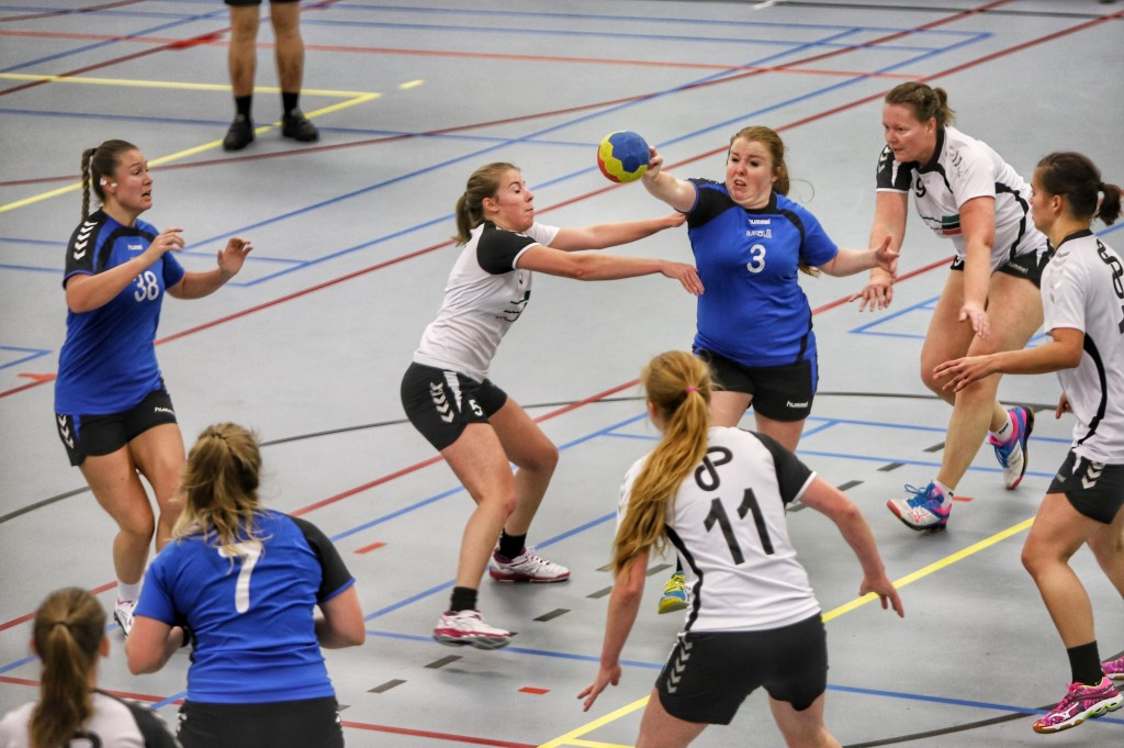 Foto: Peter de Jong © GrootNissewaard.nl