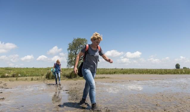 De struintocht voert door de Wildernis: het minst toegankelijke gebied van het eiland met slikken en moerassen.